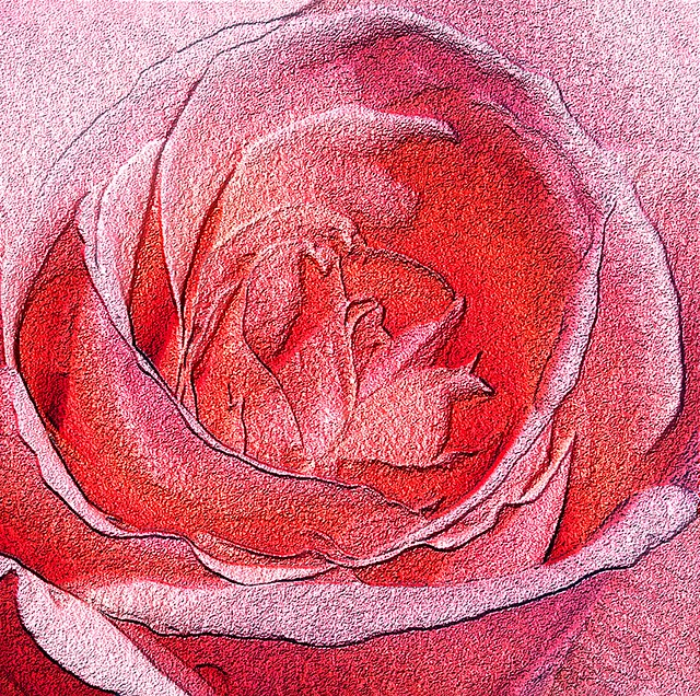 Red Rose - Computer generated effect