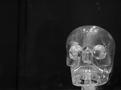 x-ray(0.0), bone(0.0), lighting(0.0), light(1.0), head(1.0), monochrome photography(1.0), monochrome(1.0), darkness(1.0), jaw(1.0), black-and-white(1.0), black(1.0), skull(1.0), organ(1.0),
