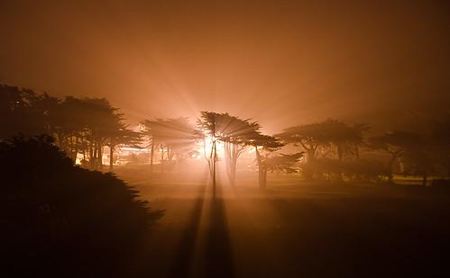 california longexposure trees light night golf course explore rays pacifica nocturne sharppark supershot 18299nightrays ffog09