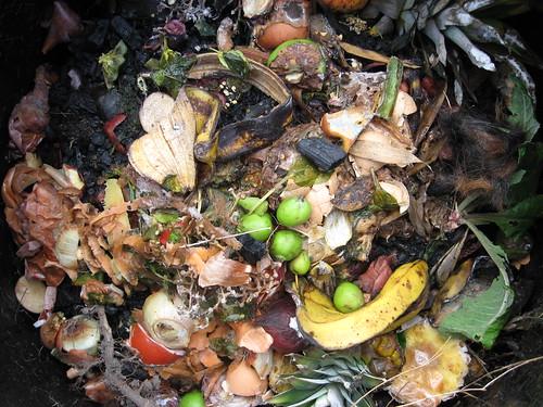 Compost bin decomposition composition.