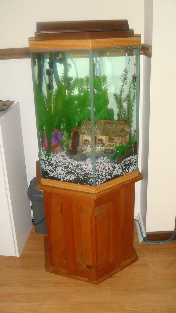 29 gallon fish tank stand for sale 65 gallon fish tank for 65 gallon fish tank