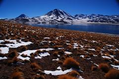 Beautiful Miscanti Lake