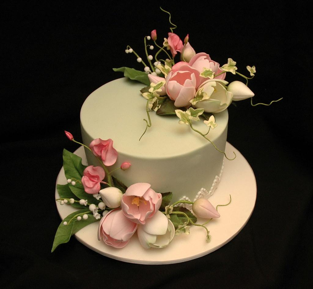 Piera62s favorite flickr photos picssr lindas birthday cake izmirmasajfo