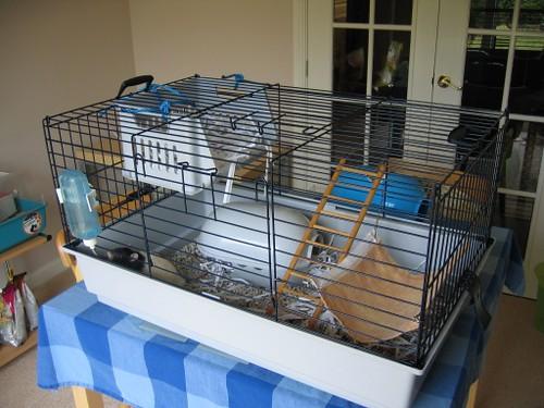 Verwonderlijk Pet rat cages QO-24
