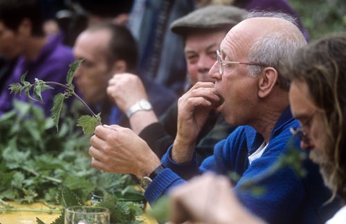 World Nettle Eating Challenge-UK