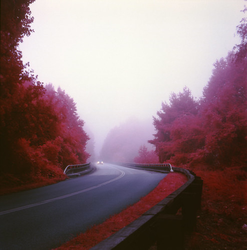 road trees mist car fog landscape nebel scenic northcarolina infrared eir pathscaminhos
