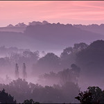 Winkworth Dawn