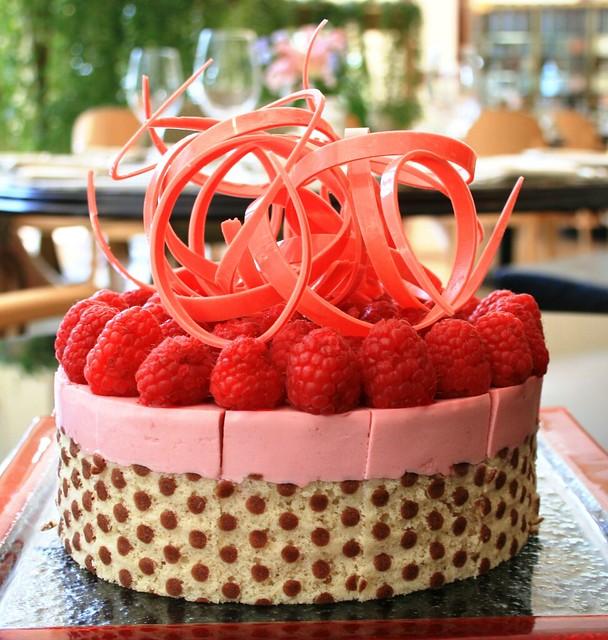 Raspberry yogurt mousse cake explore peter arthold 39 s - Mousse decoration ...