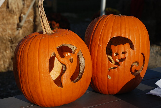Pumpkins flickr photo sharing - Citrouille decoration halloween ...