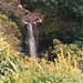 Small photo of Alexandra waterfall