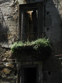 Balcony growth