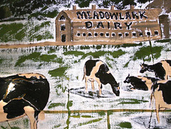 'Cows on a Wall'