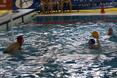 water & ball sports, water polo, water, sports, recreation, water sport, ball game,