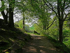 Path between Gibson Mill and Clough Hole