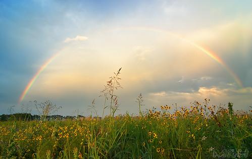 nature rural rainbow tokina1224 mo d200 kennett matthoward bootheel matthewhoward kennettmo mshhoward