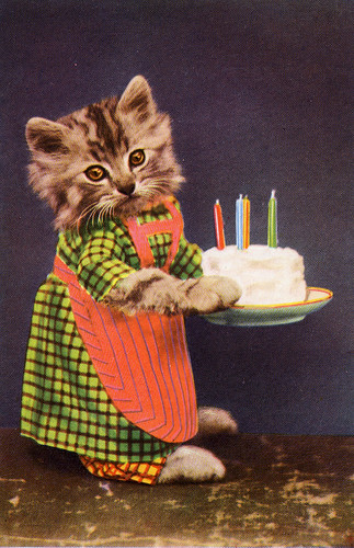 Happy Birthday Dogs And Cats Images