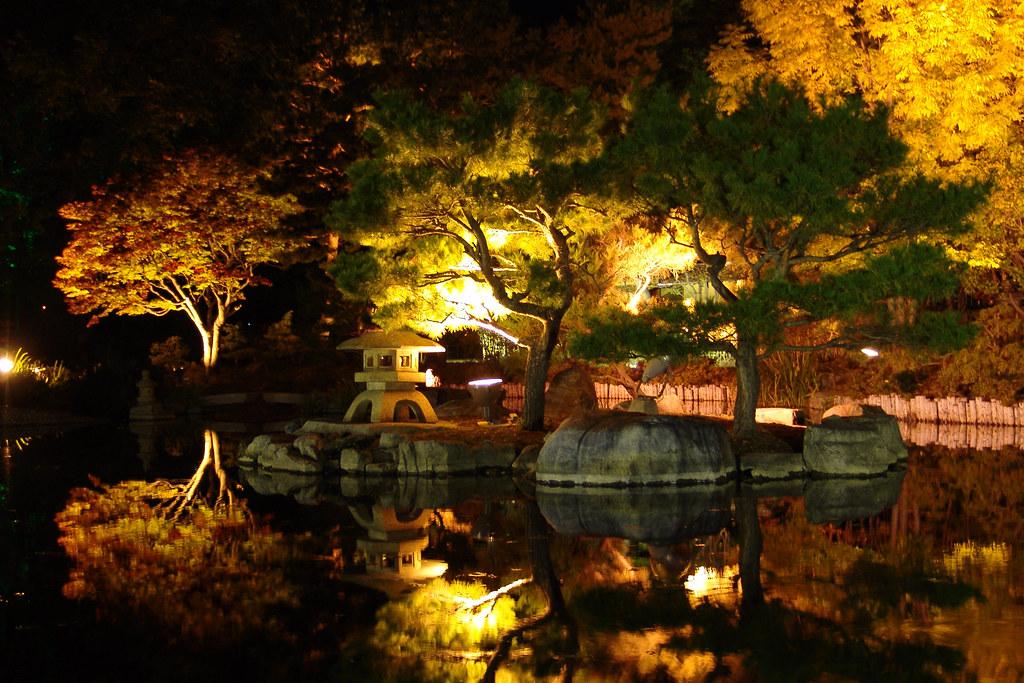 Lighting-up @ Japanese garden