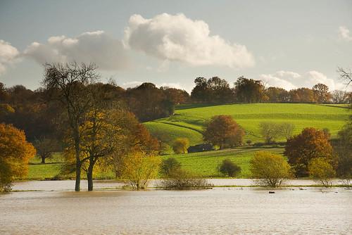 The Medway near Penshurst
