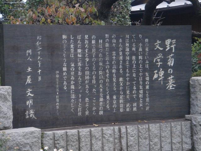 Photo:野菊の墓 By CookieM