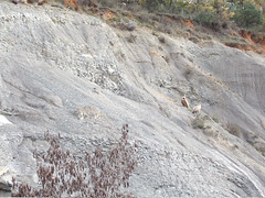 soil, outcrop, geology, bedrock, terrain, rock, quarry,