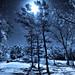 One snowy night..... by believer9