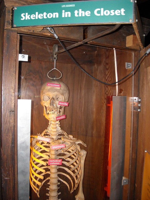 Skeleton In The Closet Definition/meaning
