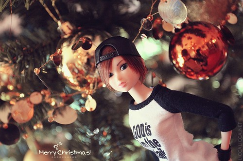 Ziemassvētku maģija - bilžu konkurss 3124066171_c3a7836d78