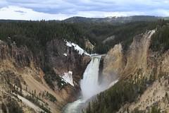 Yellowstone Falls detail
