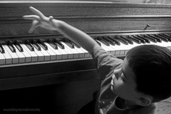 musician, pianist, piano, musical keyboard, keyboard, jazz pianist, monochrome photography, close-up, monochrome, black-and-white, black, electronic instrument,