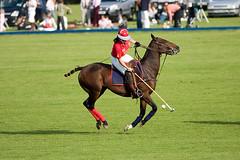 HAC Pegasus Polo Tournament