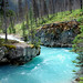 Tokumm Creek at Marble Canyon, Kootenay