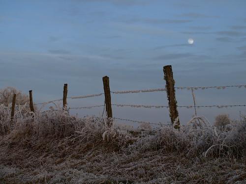 winter moon france lune landscape hiver chloe olympus paysage zuiko franchecomté boyard gelée hautesaône cboyard leffond
