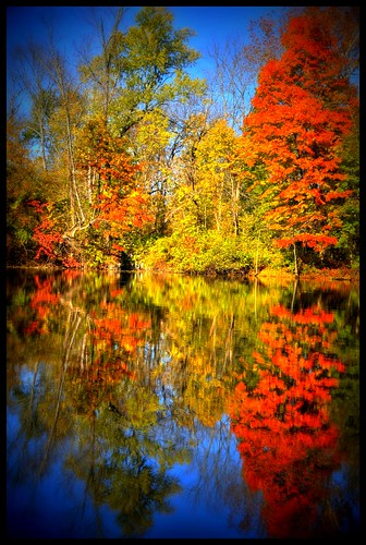 autumn reflection fall water leaves geotagged canal newjersey nj princeton hdr mudpig stevekelley abigfave