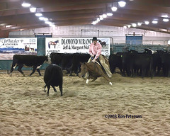 South Dakota Cutting Horse Show by Four Winds Photo