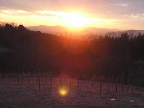 northcarolina wineries yadkinvalley dobbinscreek