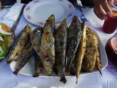 herring(0.0), mackerel(0.0), fish(0.0), sardine(0.0), milkfish(0.0), smoked fish(1.0), fish(1.0), seafood(1.0), food(1.0), dish(1.0), shishamo(1.0), cuisine(1.0),