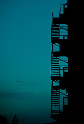 blue sky birds silhouette stairs twilight supershot visiongroup