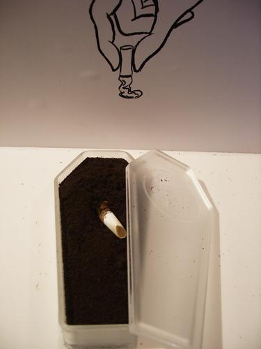 打翻你認定的咖啡渣│日本竟然把咖啡渣拿來養牛?!