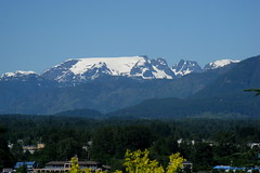 Summer Glacier from Back Road