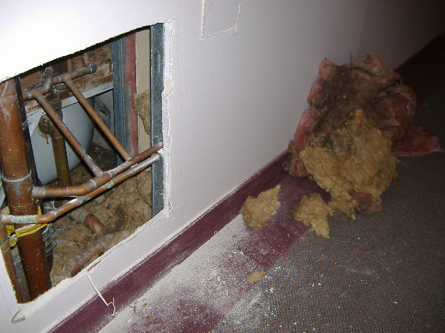 Another hallway, water pipe leaks.  Insulation left on floor for a few days.