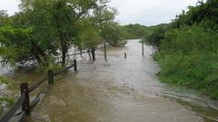 Black Creek Greenway after Hanna 2008