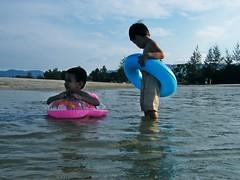 We are the beach boys