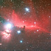 Horsehead Nebula by John Burt