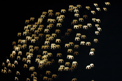 large group of elephants [ diy custom bokeh ]