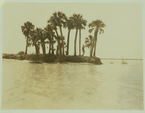 Ruth St. Denis on a island in Florida.