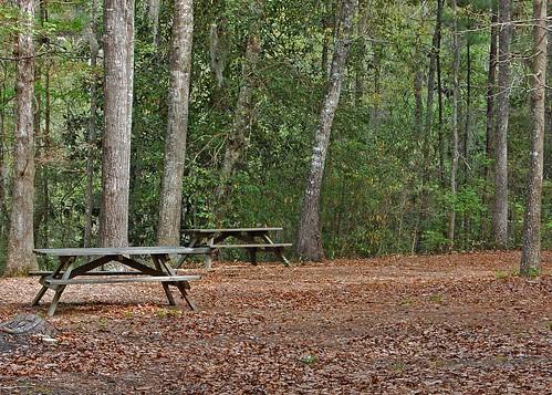 southcarolina hamptoncounty lakewarrenstatepark