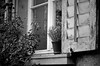 Fenster s-w by macwiener