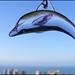 Los delfines tambien pueden volar by ! T.a.b.ú]