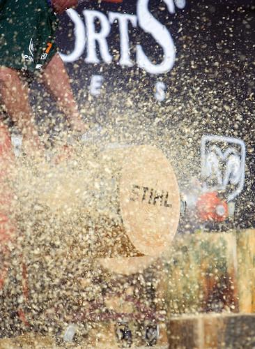 Best price stihl ms 170 miniboss chainsaw stihl - Craigslist mississippi farm and garden ...
