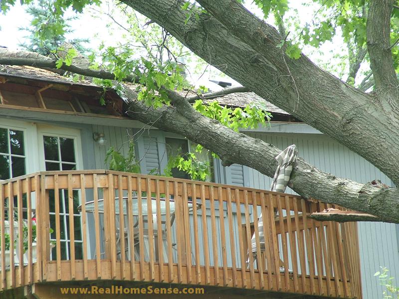June 8 Storm Damage in MI